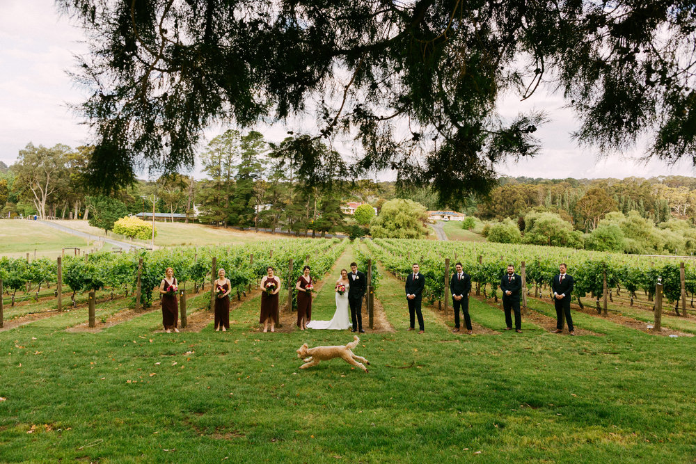 Maximillian Wedding Adelaide Hills 080.jpg