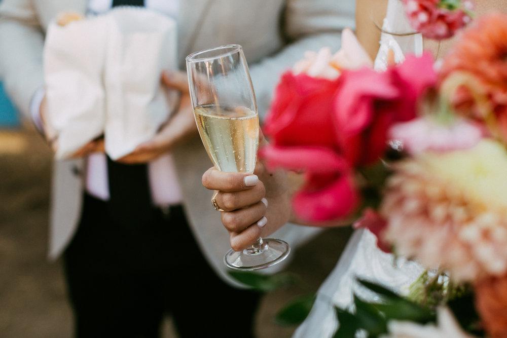 Adelaide City Fringe Garden Unearthly Delight Wedding 071.jpg