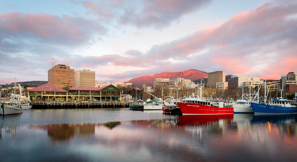 Pink Wellington - Tasmania - Wilkography