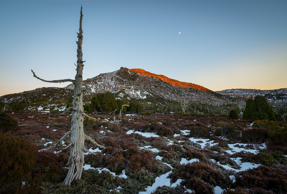 Sunrise On The Temple - Walls Of Jerusalem - Tasmania - Wilkography