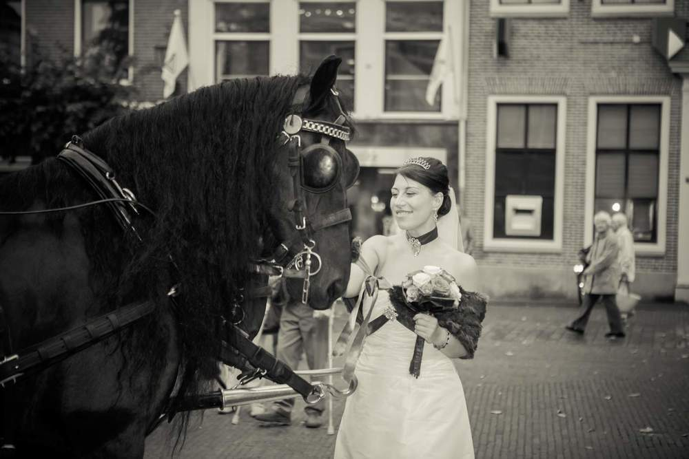The Hague Portrait, Wedding, Family, Children and Lifestyle photographer.