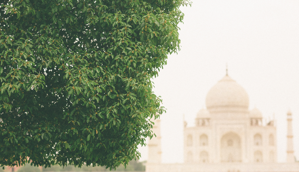 AK_CH_Siddharth Sharma-3small-1.jpg