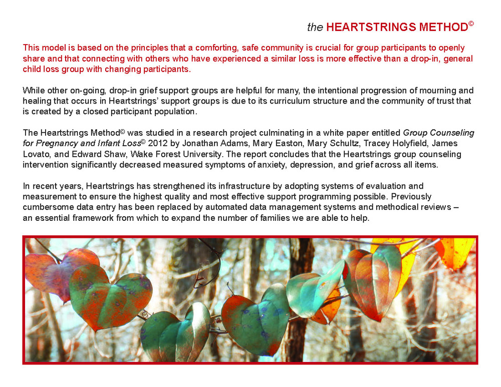 Heartstring Annual Report_Page_13.jpg