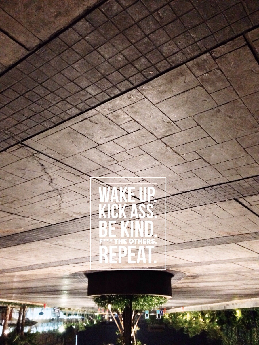 wake up, kick ass, be kind, fuck the others, repeat.