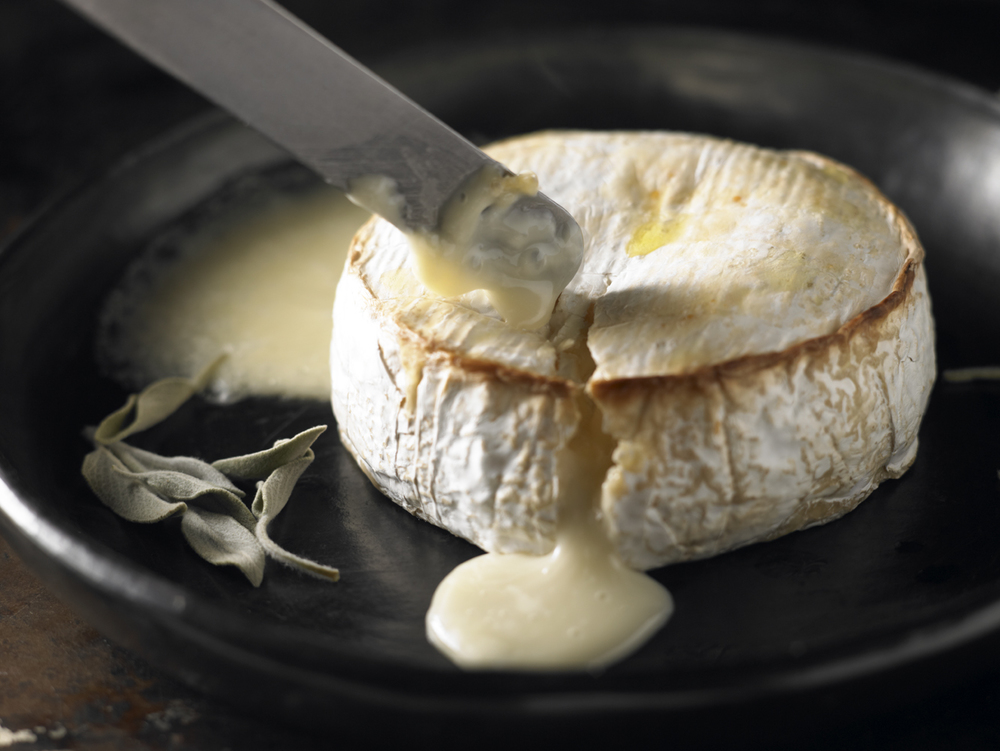 Food portraiture Camembert 60691.jpg