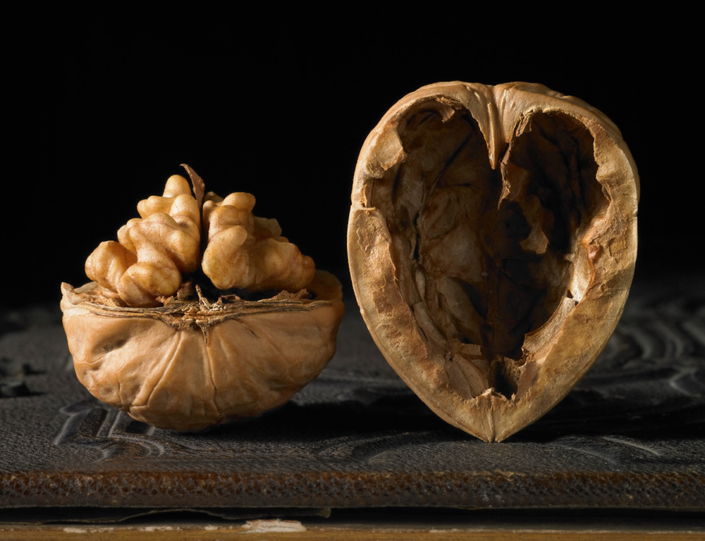 Walnut with a heart shaped shell