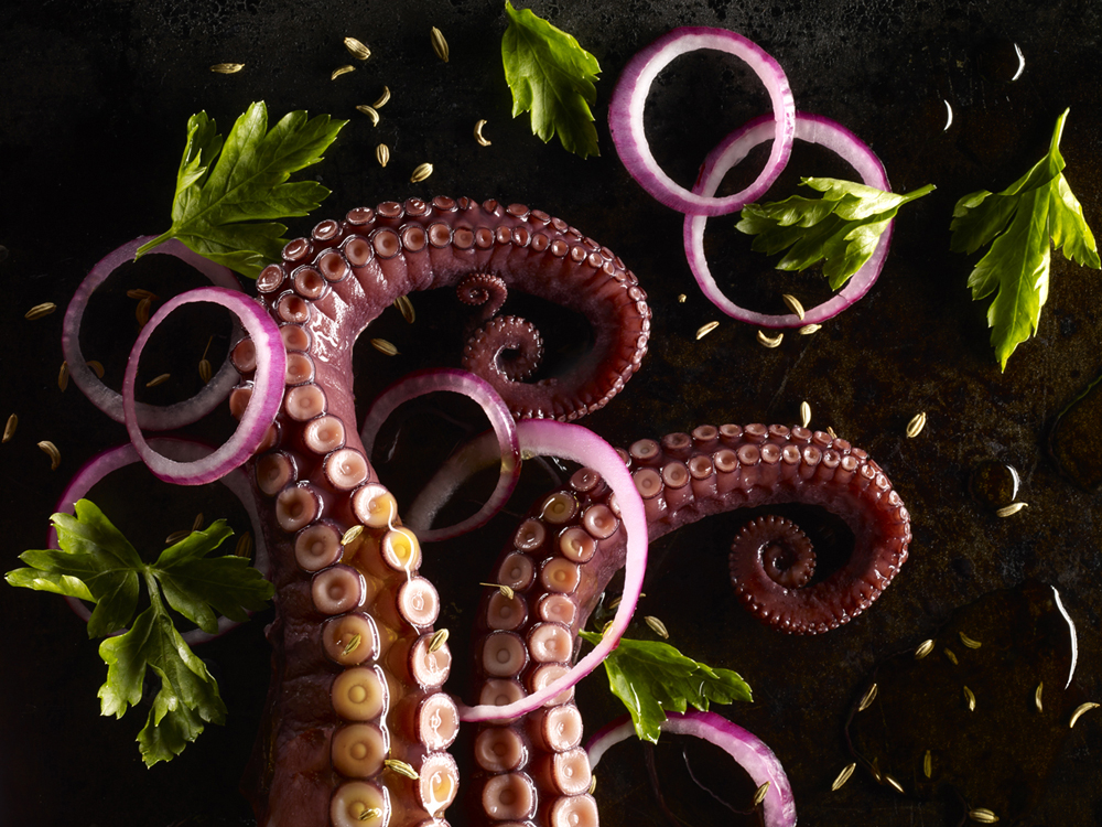 Octopus salad with fennel