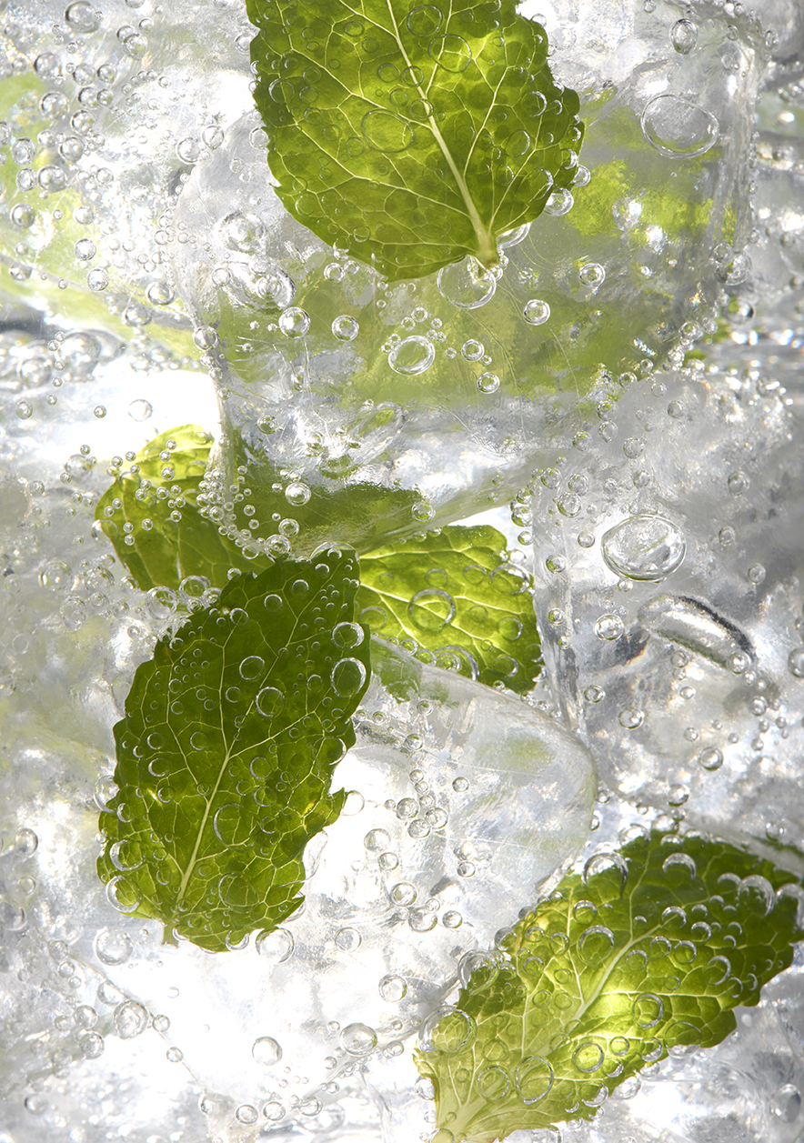 Mint leaves in ice_13945.jpg