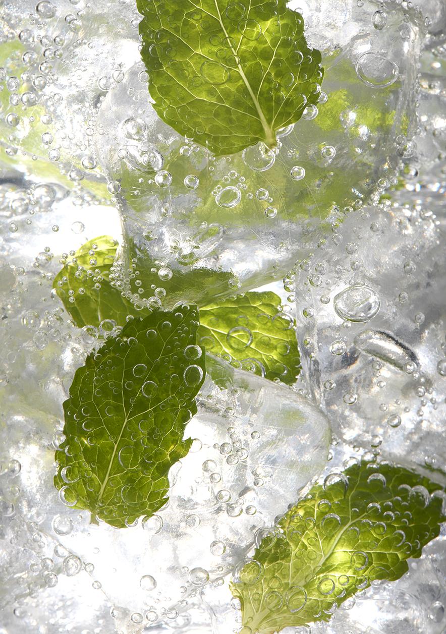 Mint leaves in ice_13945.jpg