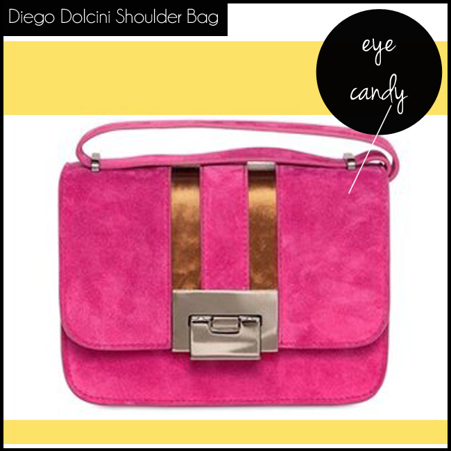 4 Diego Dolcini Suede And Laminated Leather Shoulder Bag