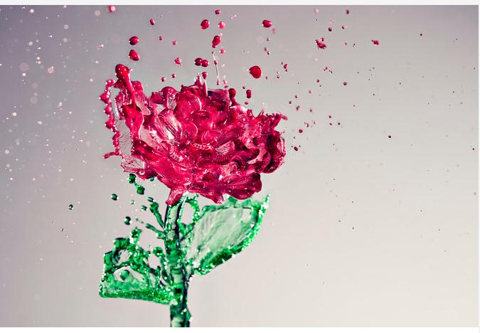 flower&water