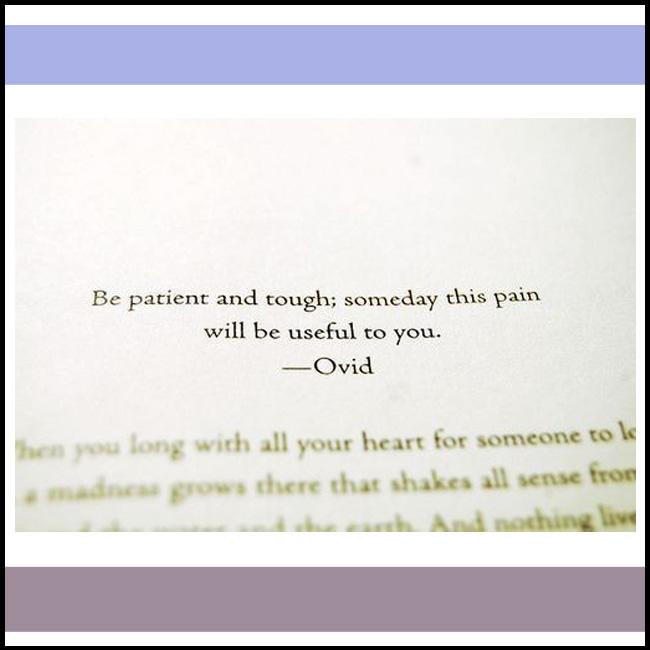 quote copy