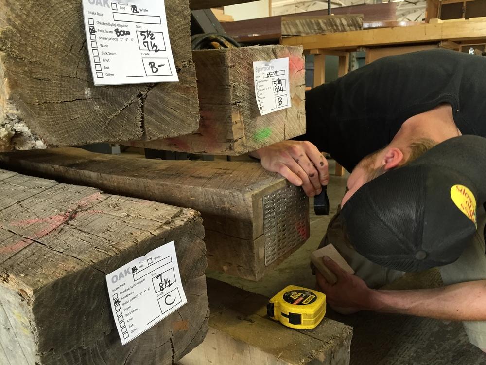 Chris Carter identifying timber species at Rail Yard Studios