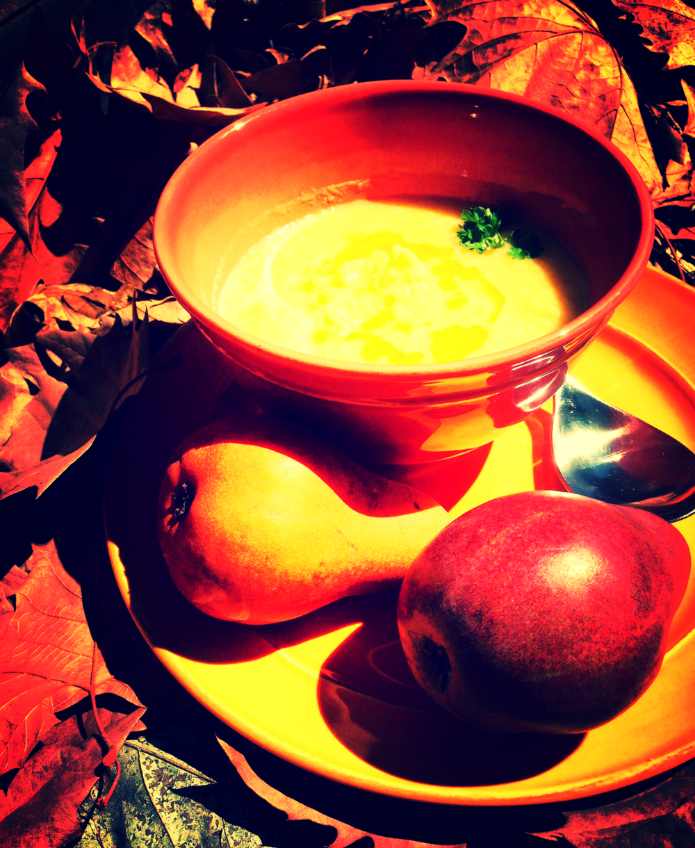 For the Love of Leeks Soup served with Bosc and Red Anjou pears.