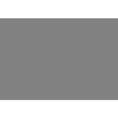 grey denver nuggets.png