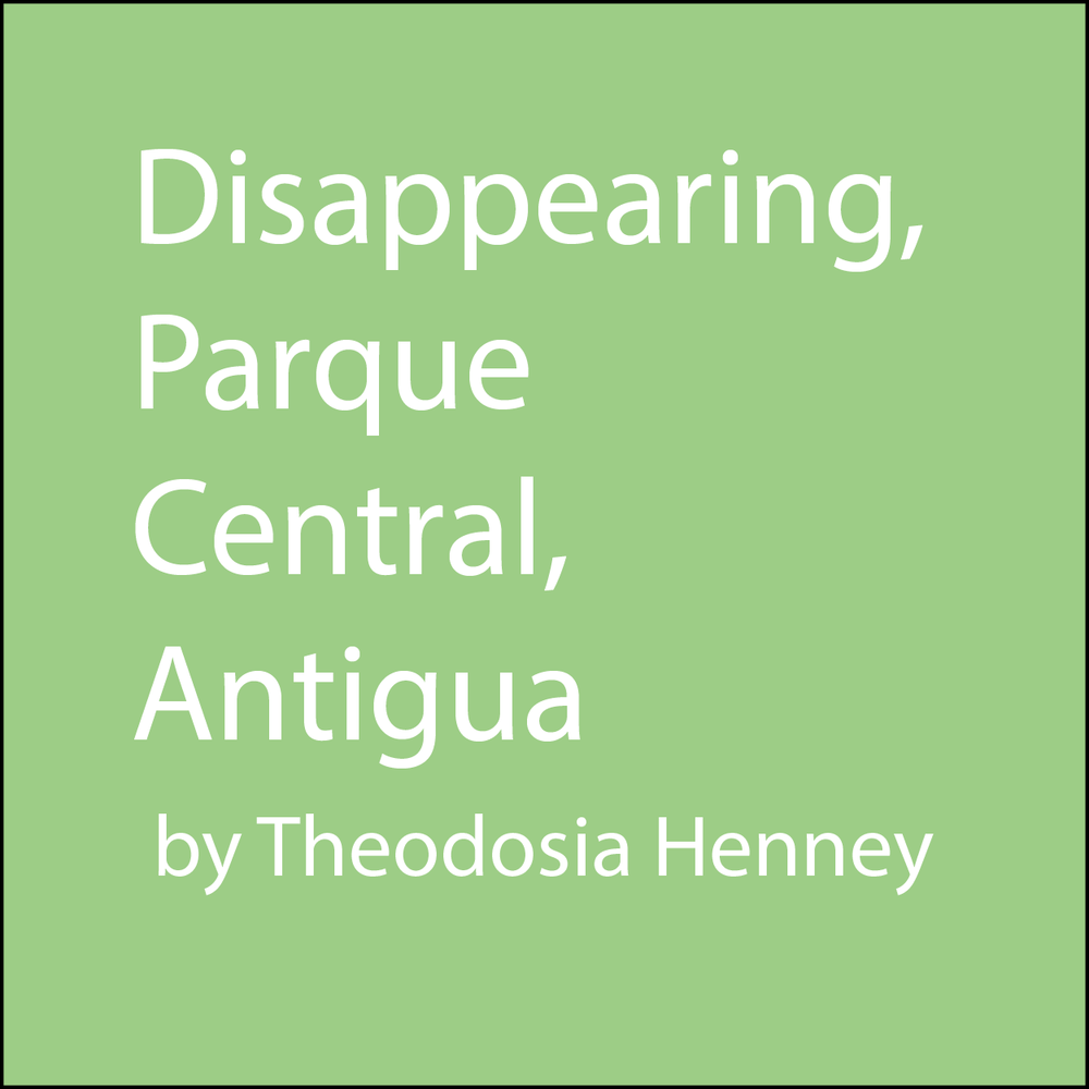 disappearing parque central antigua.png