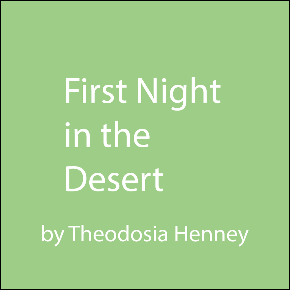 first night in the desert.png