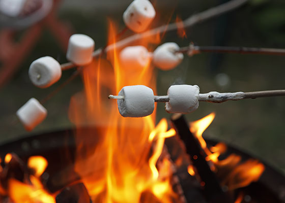 marshmallows-fire-.jpg
