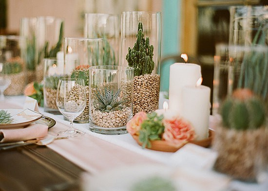 Succulents_via_pinterest_from_casasugar