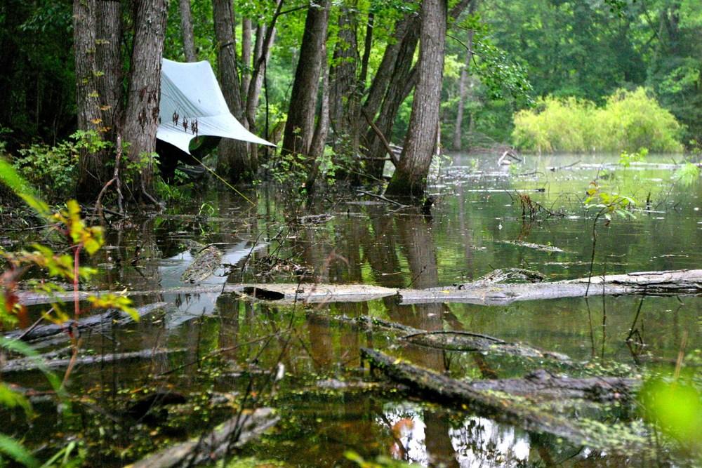 Nubé Swamp small.jpg