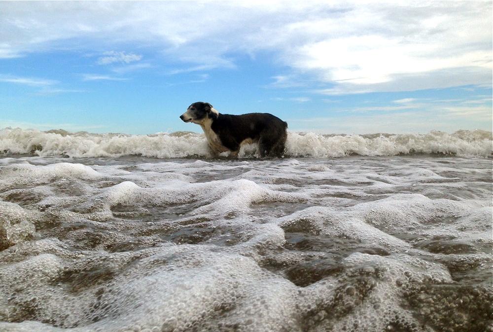 el-salvador-beach-02.jpeg