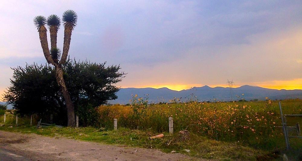 2 Outside of San Juan small.jpeg