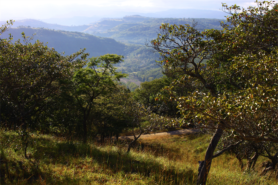 Looking out over Somoto valley from the trail