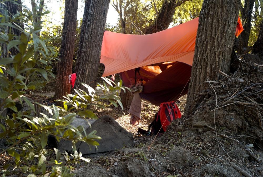 Juli cozied up in her hammock