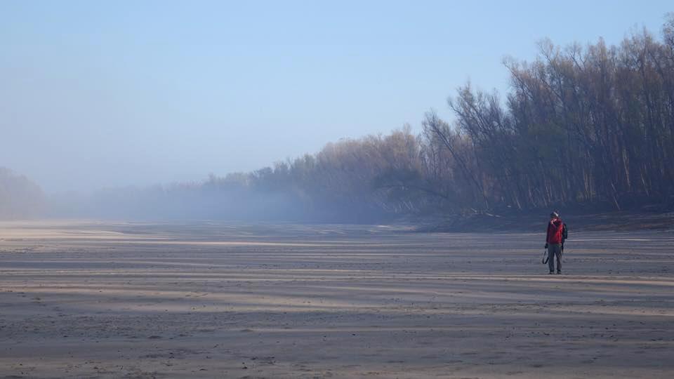 Foggy Morning - Photo by Layne Logue