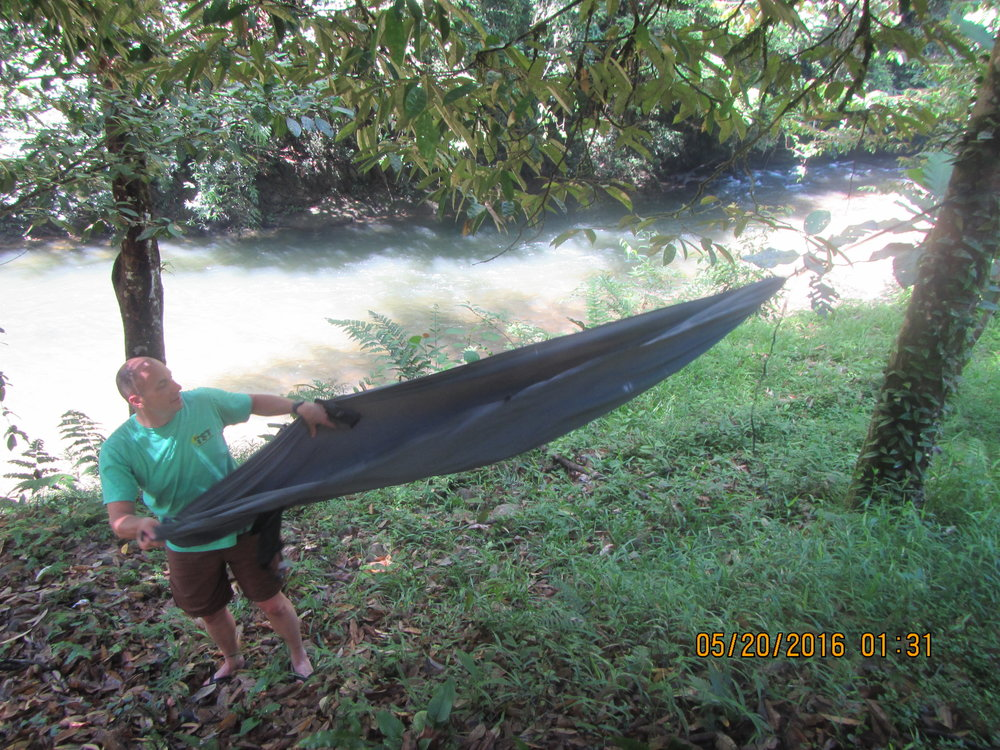 Dr. McLeod setting up a Castle Rock Solo hammock on the banks of Kuala Belalong in the heart of the Temburong rainforest in Brunei. Photo by Dr. David S. McLeod.