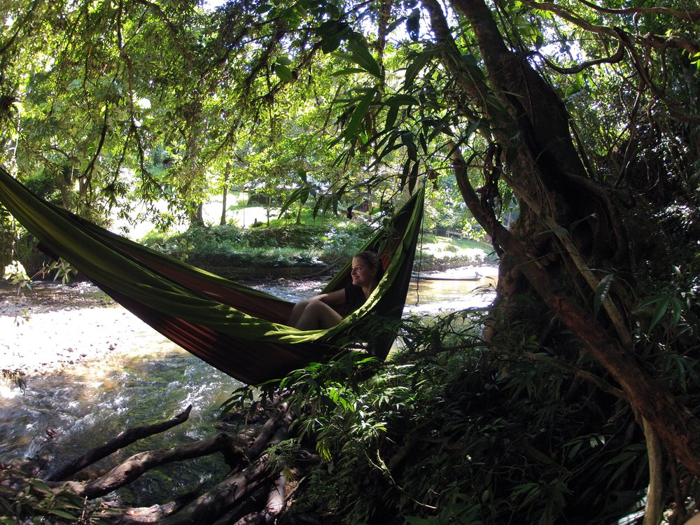 Ariel relaxing in a Pares hammock suspended over the Kuala Belalong across from the Kuala Belalong Field Studies Centre in the heart of the Ulu Temburong rainforest in Brunei. Photo by Dr. David S. McLeod.