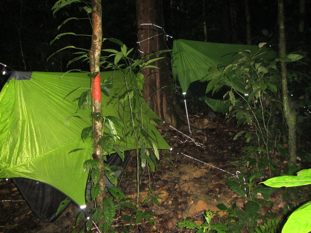 On the last night at the Kuala Belalong Field Research Centre Dr. McLeod, Ariel and several others opted to test out their hammocking and camping skills in the middle of the Temburong rainforest in Brunei. Photo by Dr. David S. McLeod.