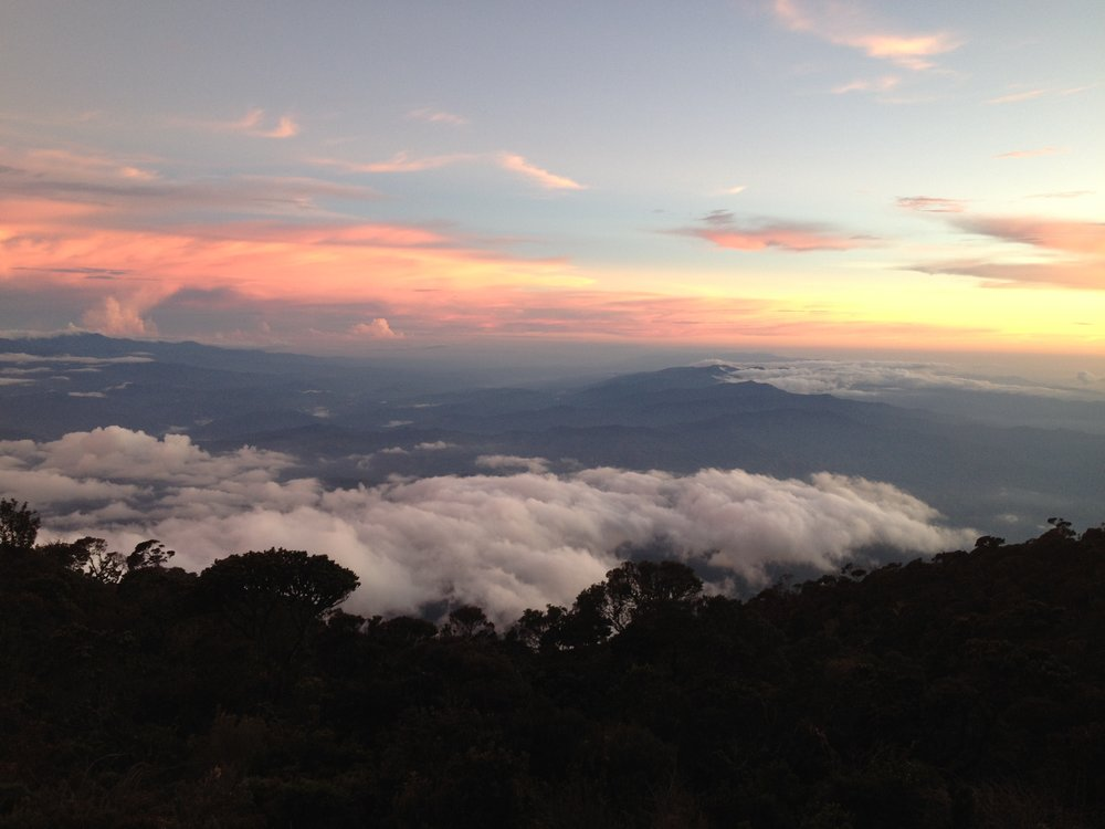 Sunset over the rainforests of Sabah, Malaysia from Low's Peak base camp, Laban Rata, on Mt. Kinabalu. Photo by Ariel Miranda.