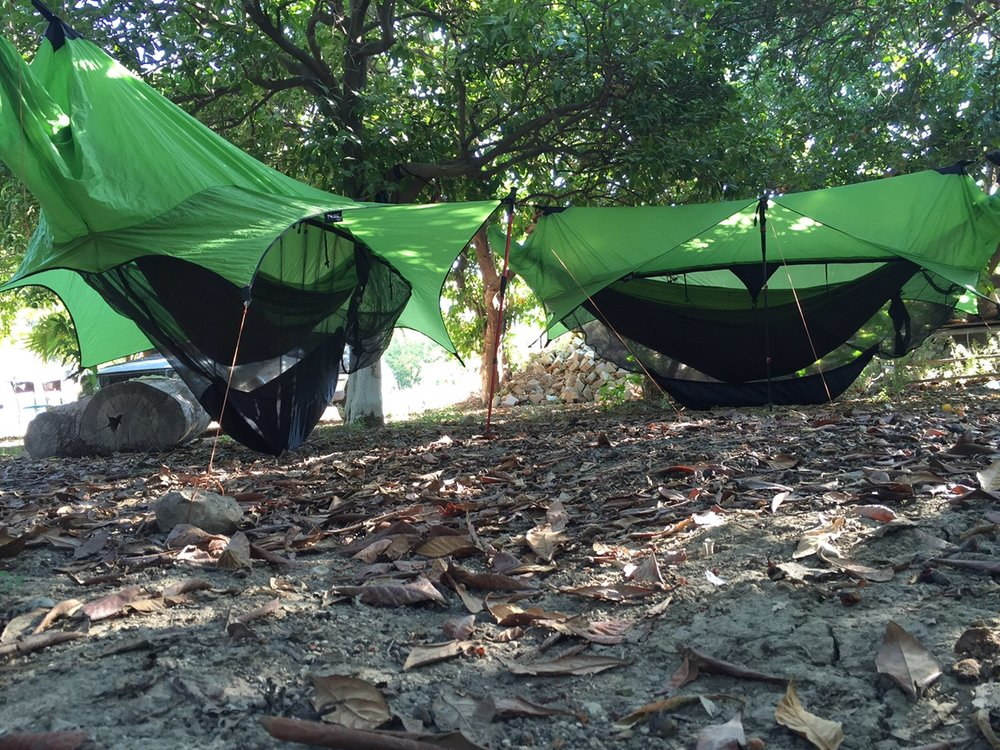 Hammock-camping has its perks!