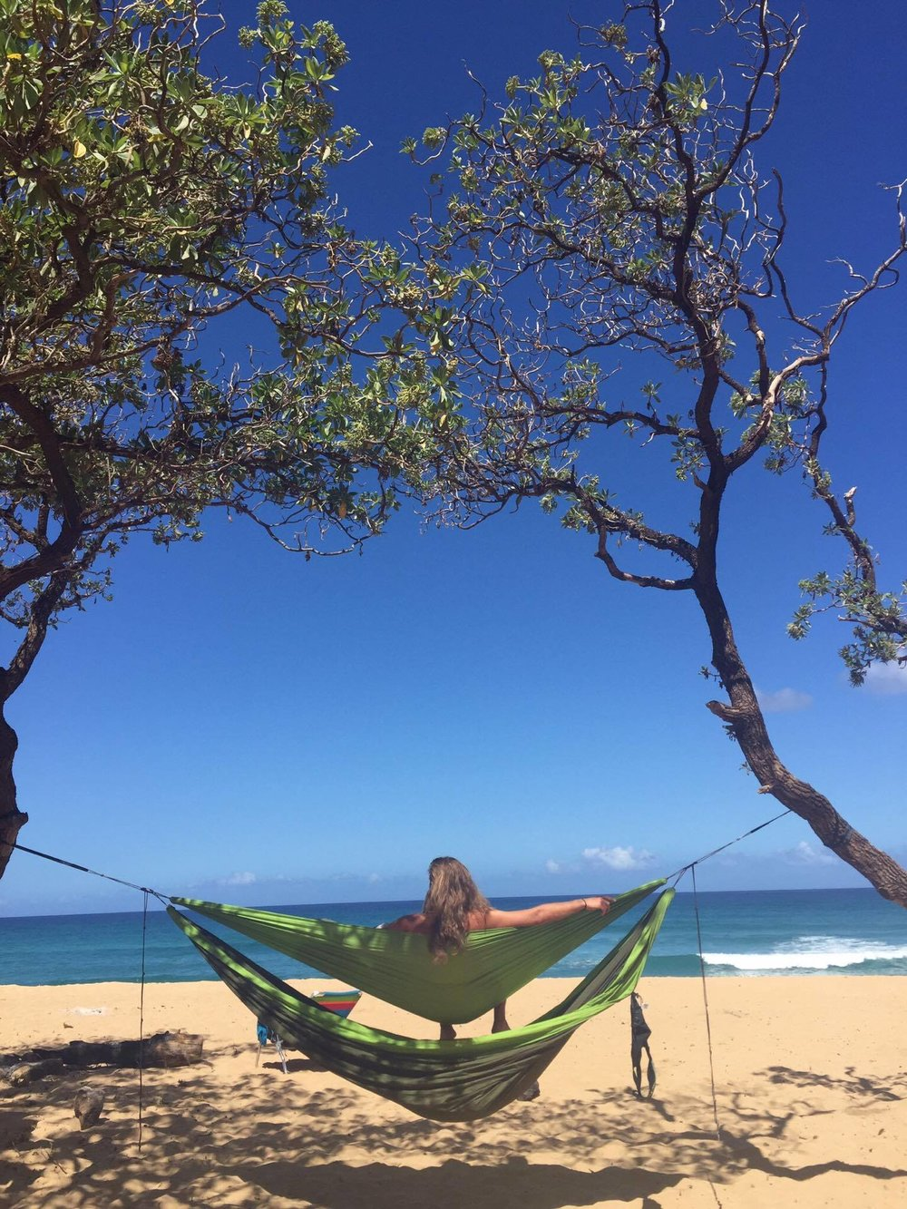 The perfect hammocking spot on the beach!