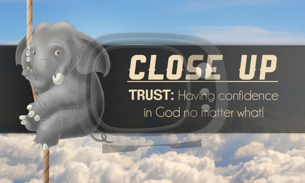 Trust_CloseUp2.jpg