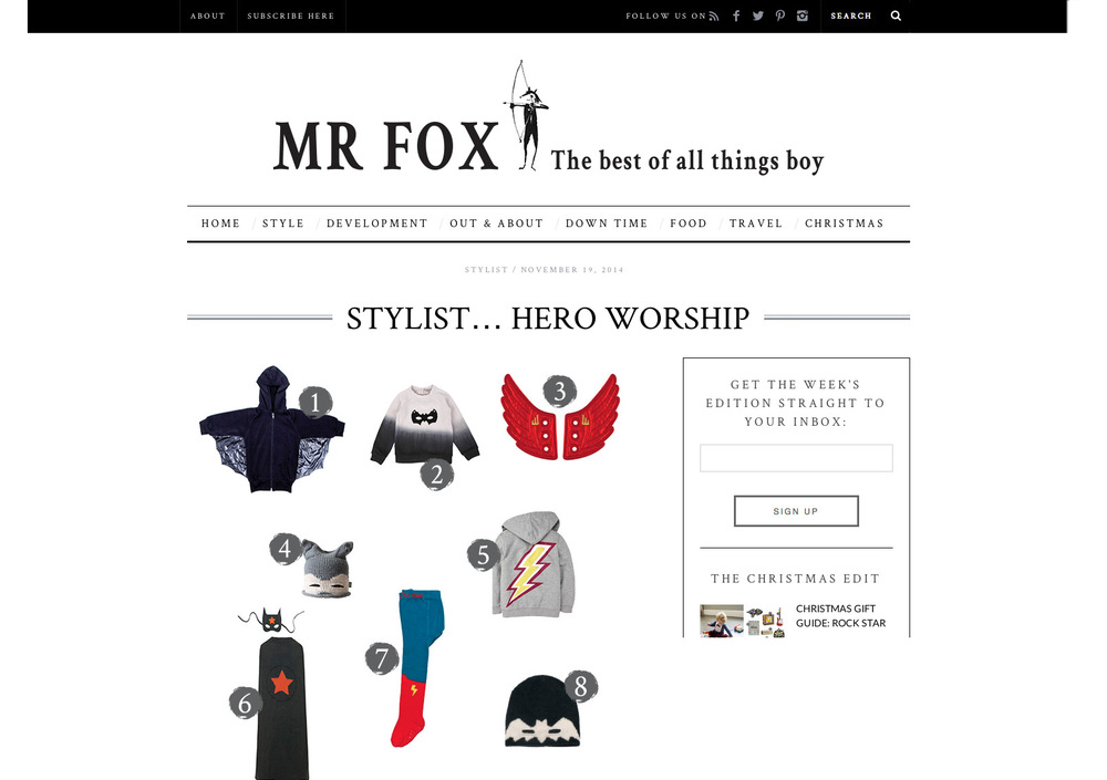 mrFox.jpg