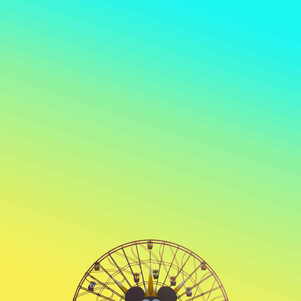 ColorDis_13.jpg