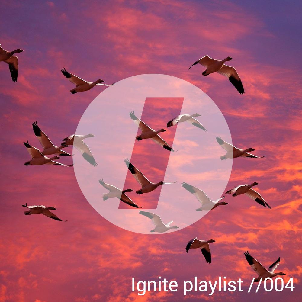 Ignite Playlist // 004