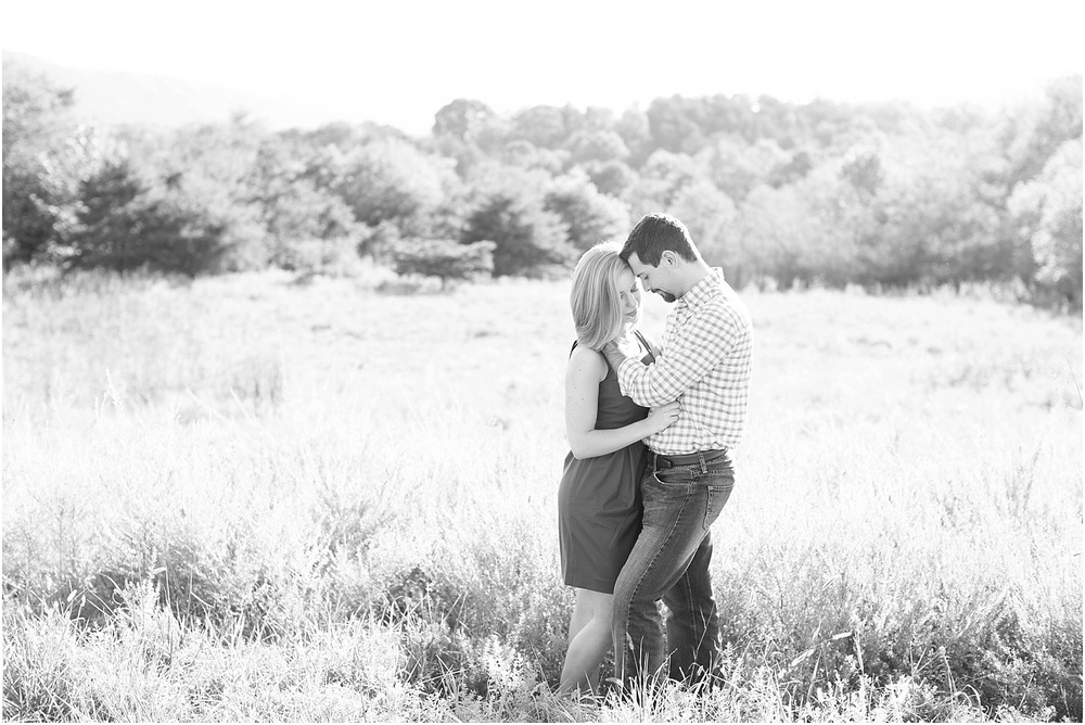 Rolling Gallery | Ashley Powell Photography| Milestone Photographer | Roanoke, VA_0318.jpg