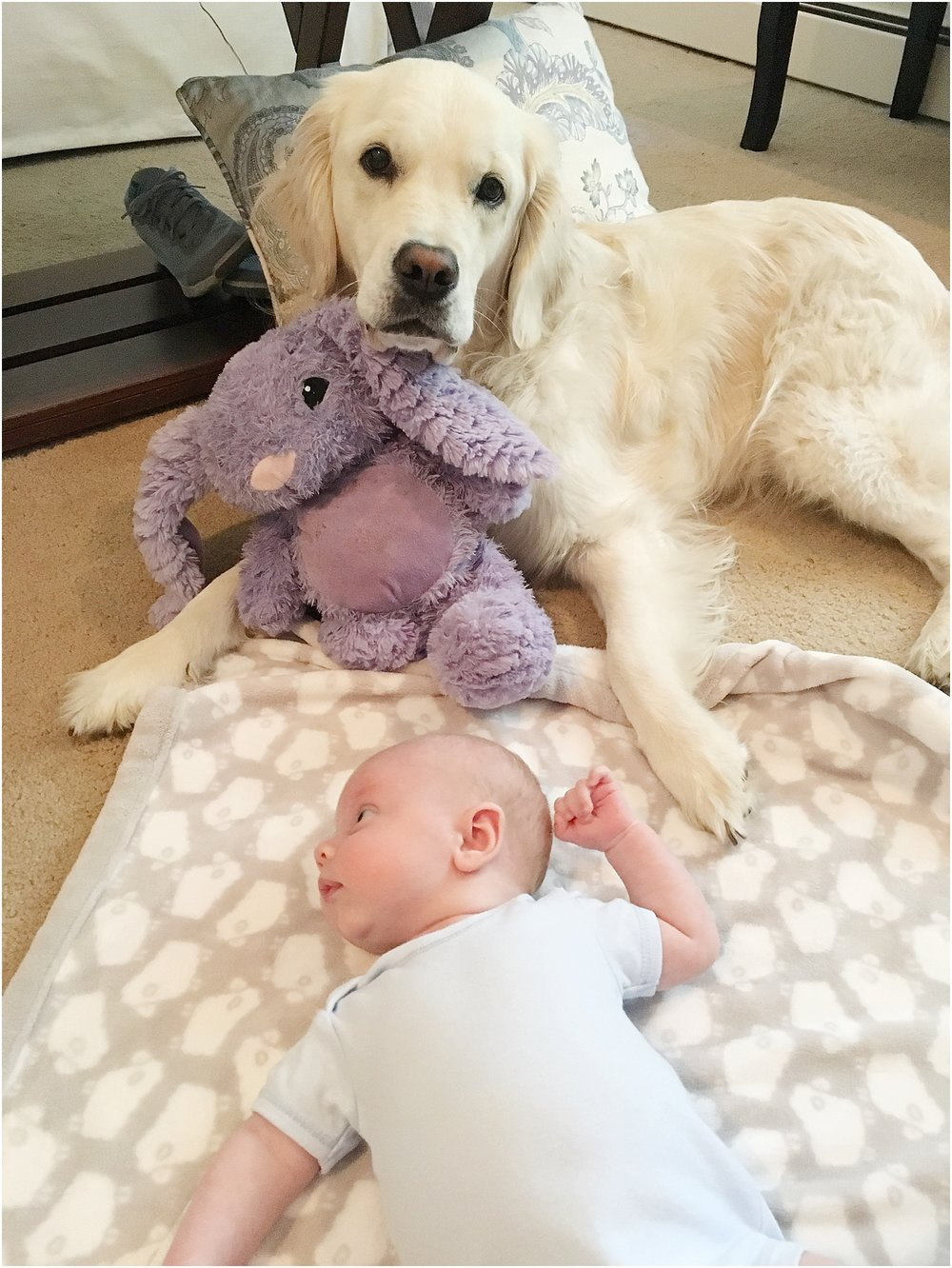 Ellie loves laying with Jack during floor/tummy time!
