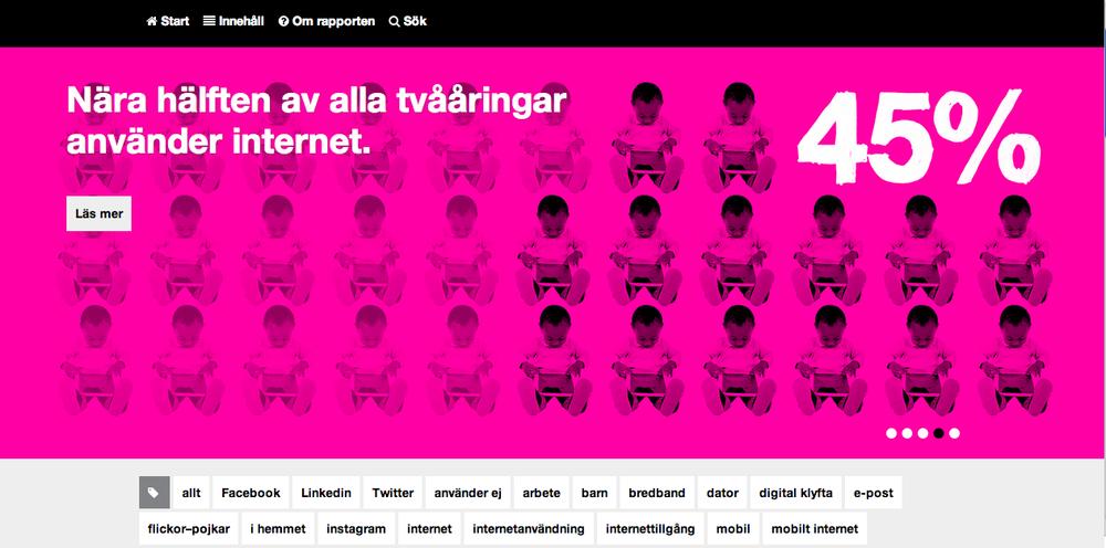 Screenshot  från Svenskarna och internet 2013