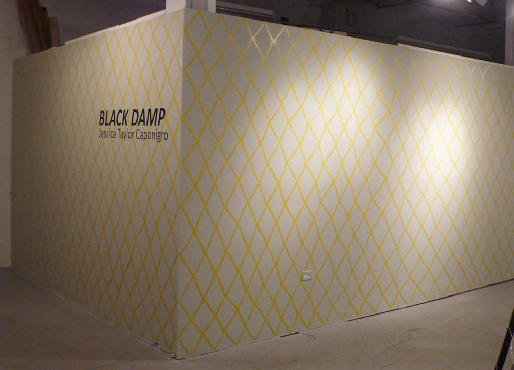 Black Damp acrylic 8 ft x 30 ft