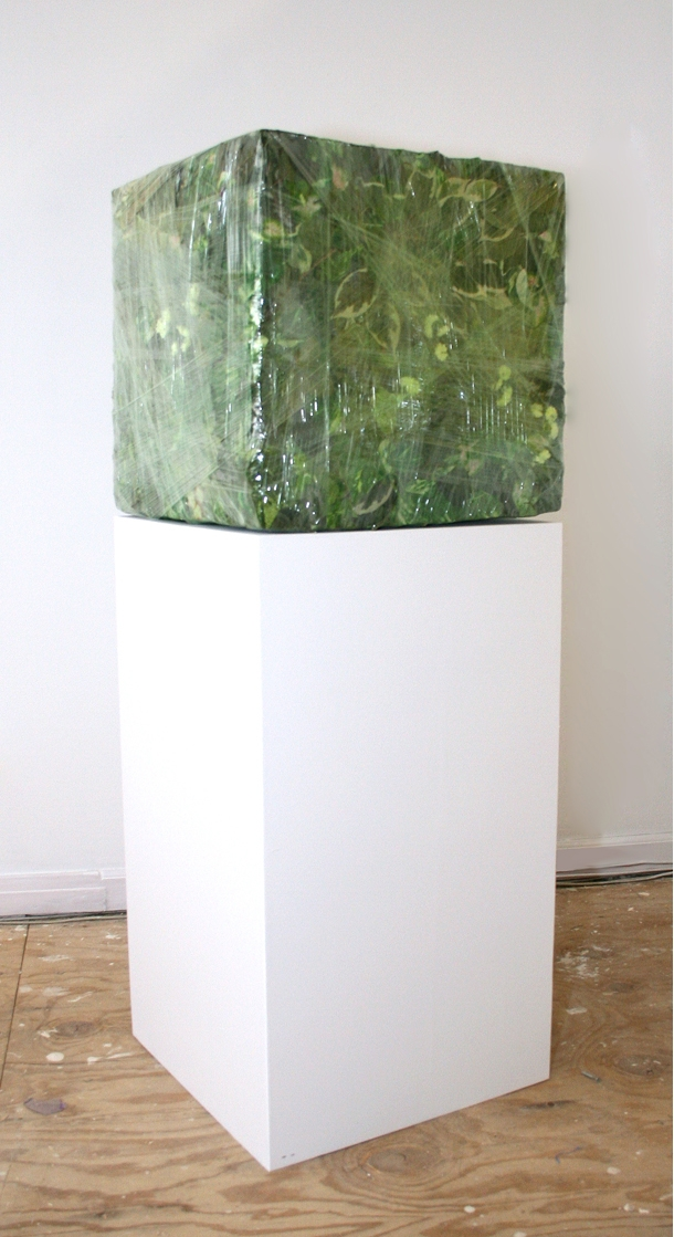 Untitled (Foliage Cube)