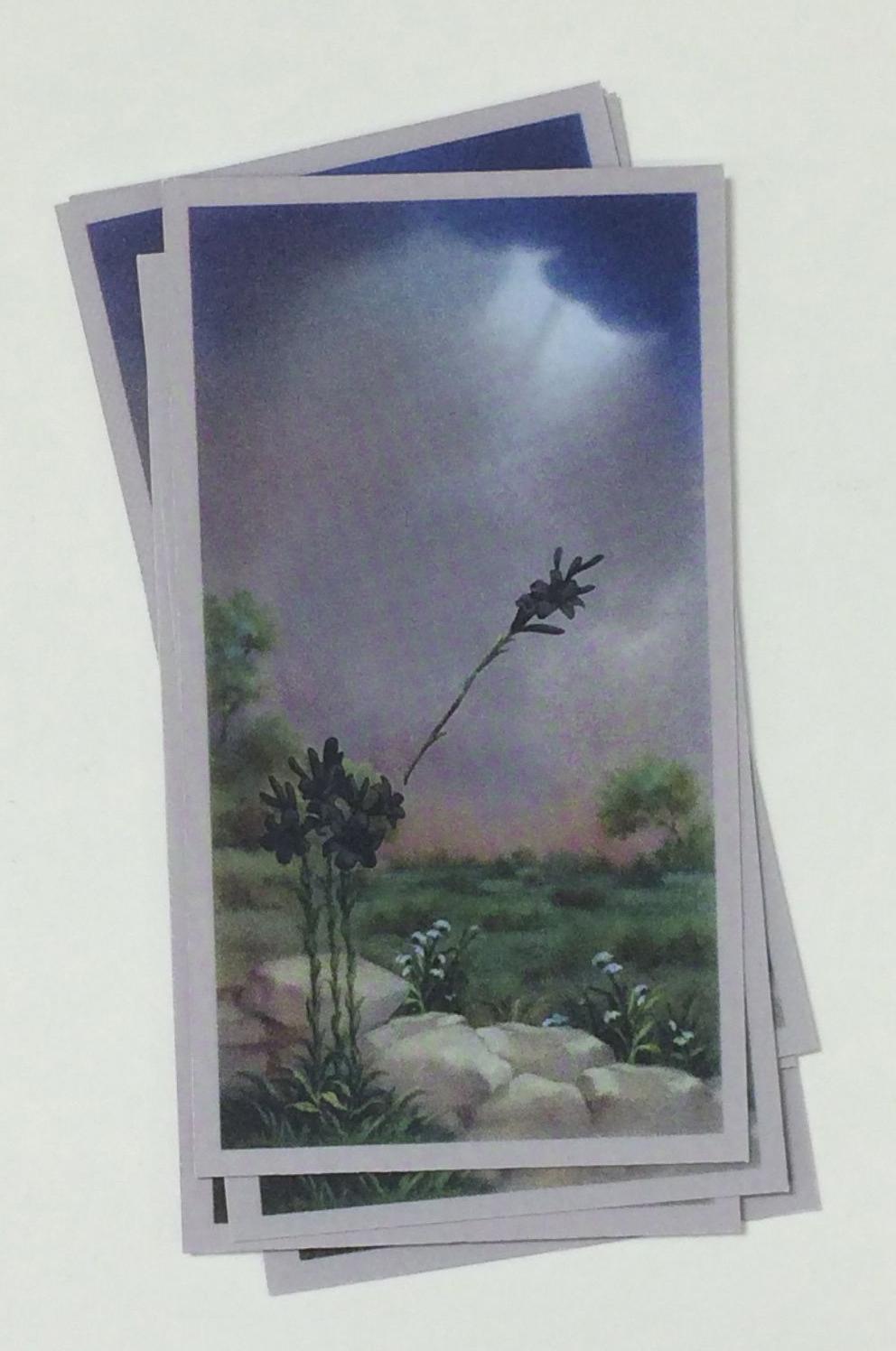 Untitled (prayer card)