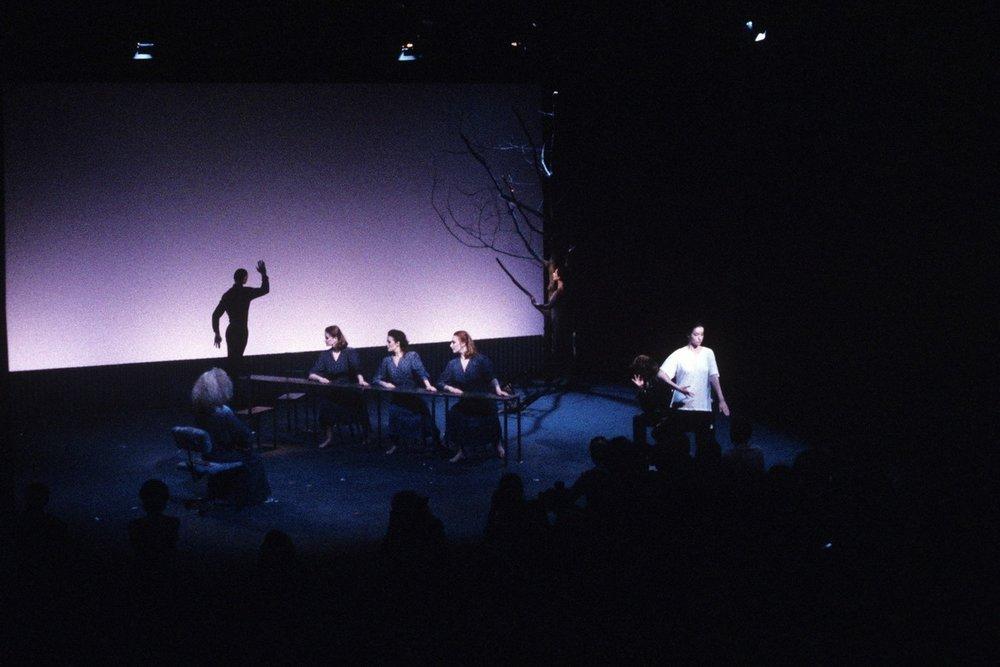 New York University, 1986