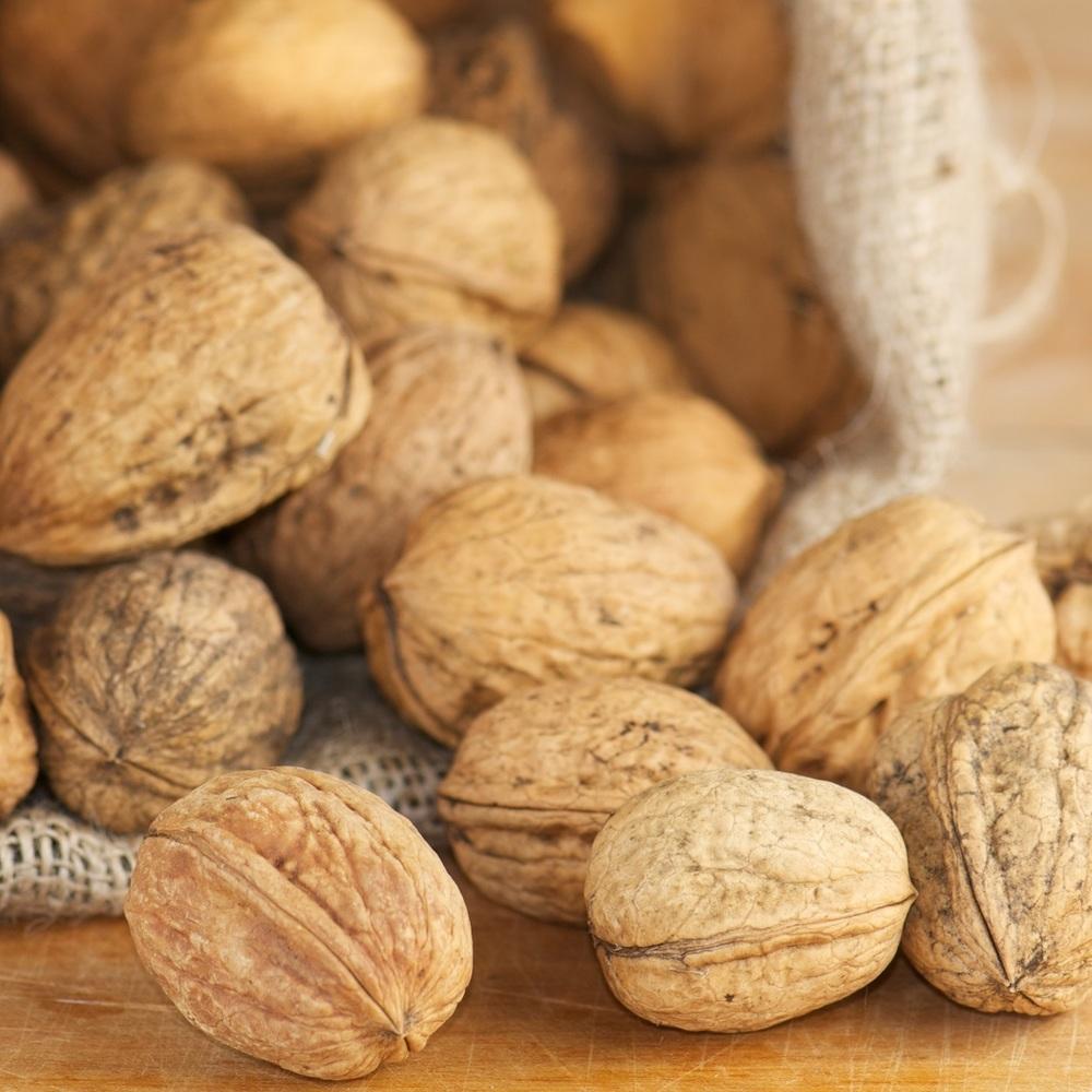 walnut shells sq.jpg
