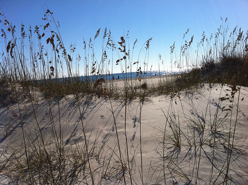 Holden Beach Dunes