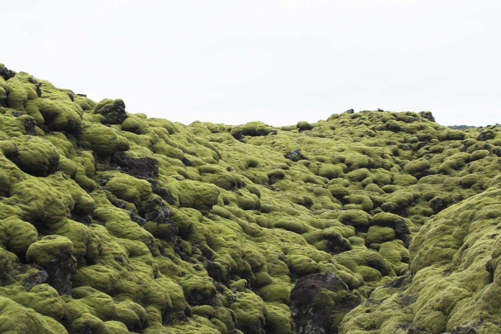 Iceland_2017_ (61 of 162).jpg