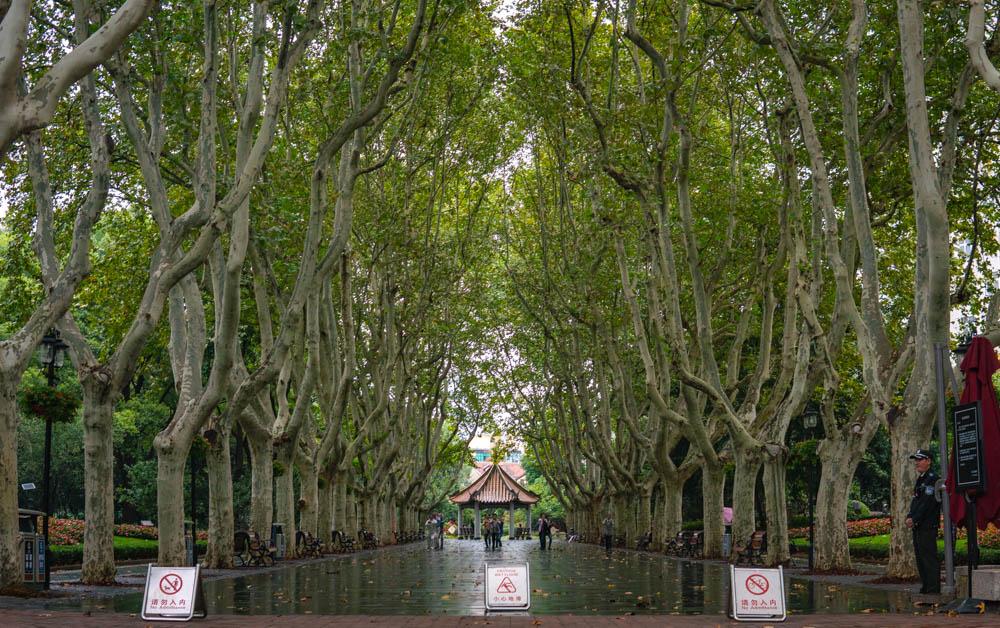Xiangyang Park Entrance